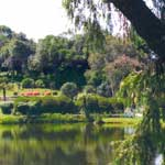 Bvumba Botanical Garden Lake